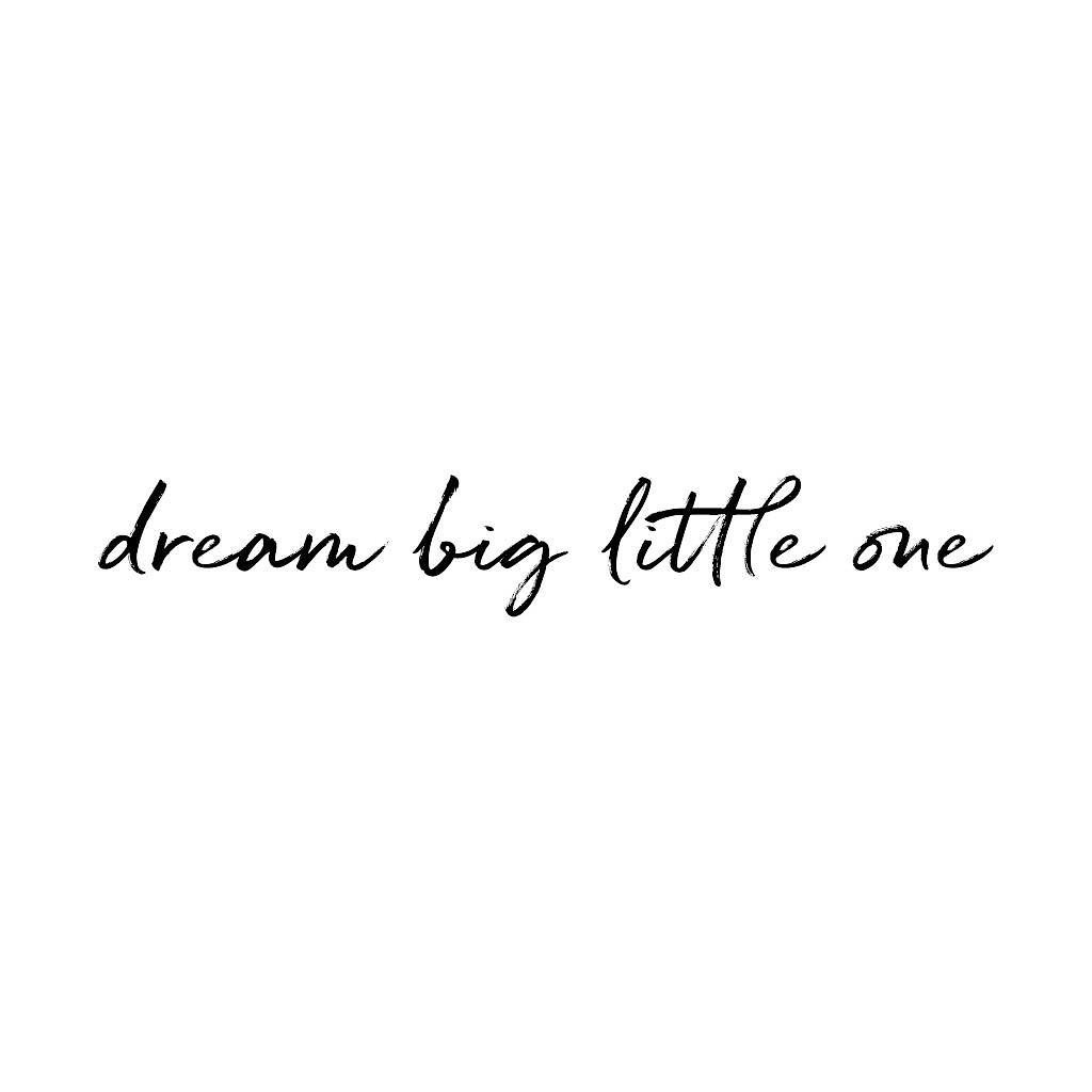 Stickstay - dream big little one