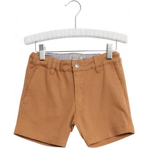 Chino Shorts Ditmer
