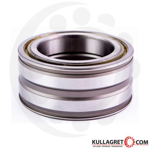SL045009-PP Cylindriskt Rullager INA