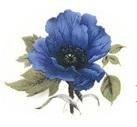 Decor-437-K-blå
