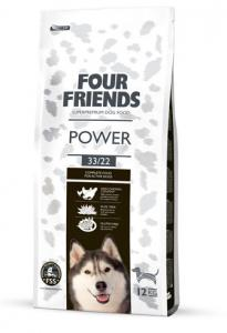 Four Friends Power