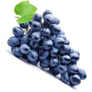 Grape Concord Essens