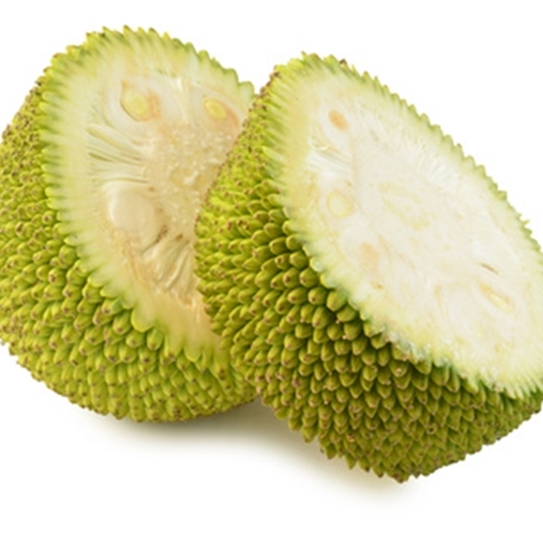 Jackfruit (TFA)