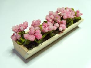Balkonglåda med blommor