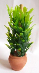 Grön växt/Blomma