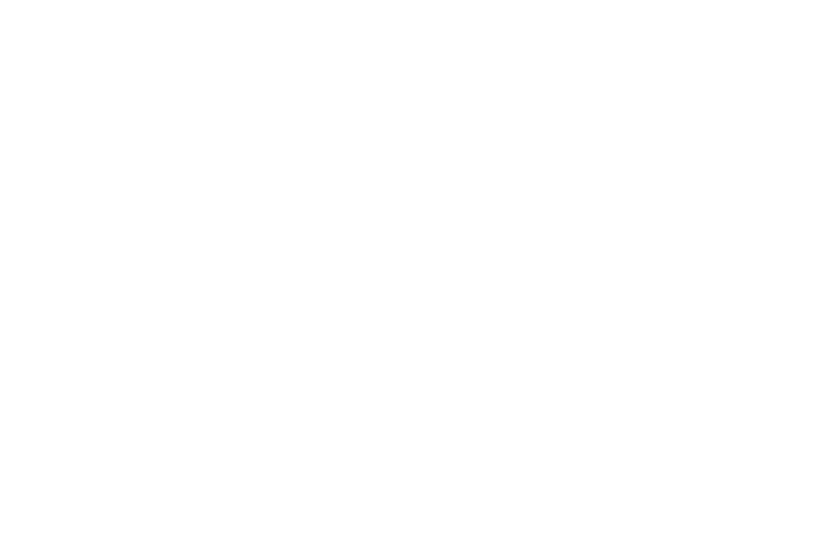 Eventrent i Lammhult