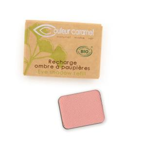Couleur Caramel Refill Eye shadow n°123 Light mat rose