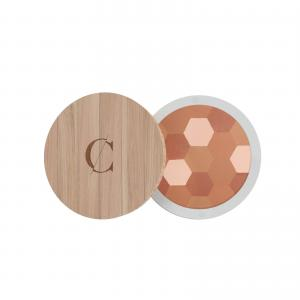 Couleur Caramel Mosaic Powder n°233