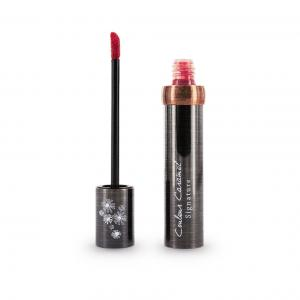 Couleur Caramel Signature Lip gloss n°804 Cherry