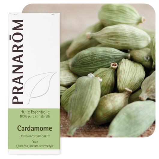 Pranarôm Cardamom essential oil (Elettaria cardamomum)  5 ml