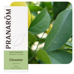 Pranarôm Essential oil Citrus limon Lemon 5 ml