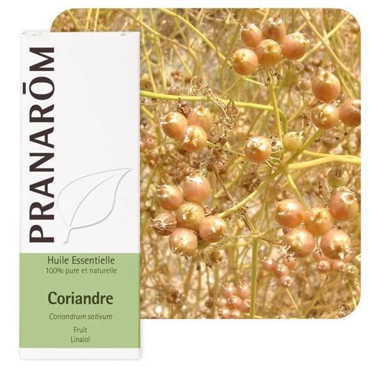Pranarôm Coriander essential oil (Coriandrum sativum) 10 ml