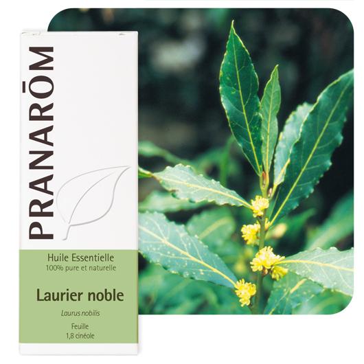 Pranarôm Laurel bay essential oil (Laurus nobilis) 5 ml