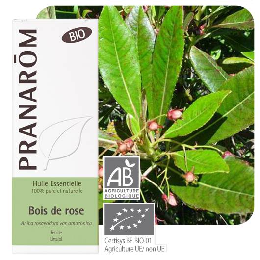 Pranarôm Rosewood essential oil (Aniba rosaeodora var. amazonica) 10 ml