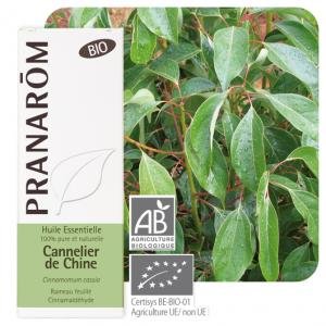 Pranarôm Chinese cinnamon essential oil (Cinnamomum cassia) 10 ml