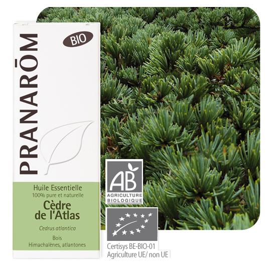 Pranarôm Cedarwood essential oil (Cedrus atlantica) 10 ml