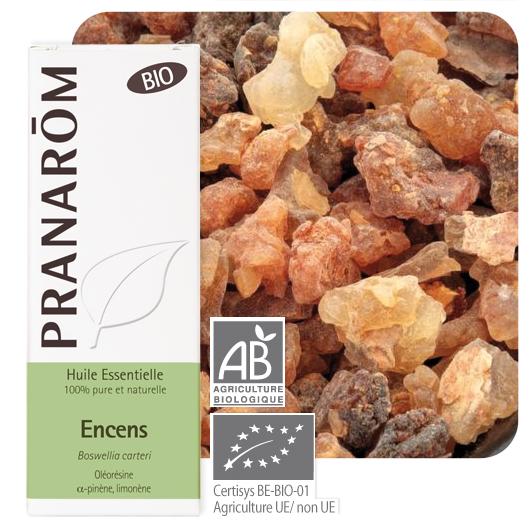 Pranarôm Frankincense essential oil (Boswellia carteri) 5 ml