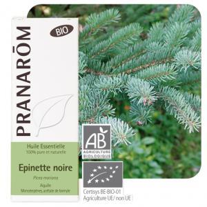 Pranarôm Essential oil Picea mariana Black spruce Organic 10 ml