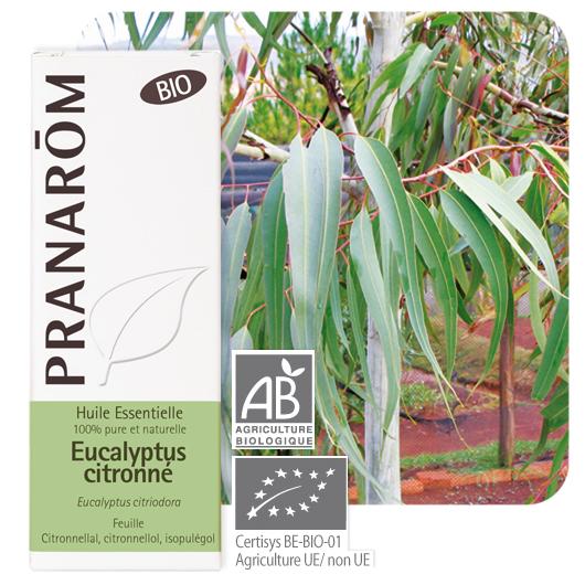 Pranarôm Lemon eucalyptus essential oil (Eucalyptus citriodora) 10 ml