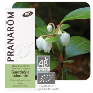 Pranarôm Essential oil Gaultheria fragrantissima Wintergreen Organic 10 ml