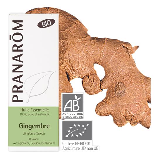 Pranarôm Ginger essential oil (Zingiber officinale) 5 ml