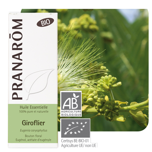 Pranarôm Clove essential oil (Eugenia caryophyllus) 10 ml