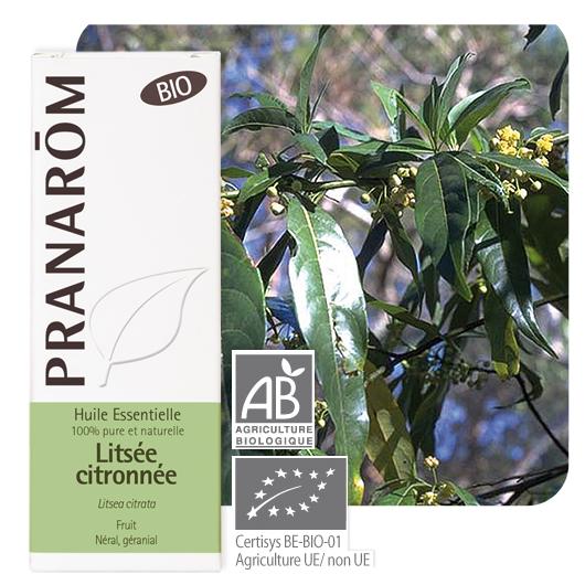 Pranarôm Lemon Litsee essential oil (Litsea citrata) 10 ml