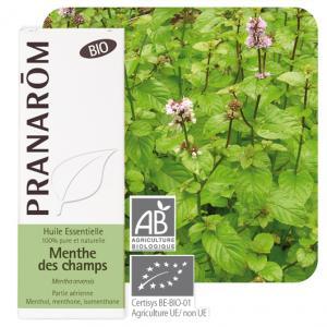 Peltominttu eteerinen öljy (Mentha arvensis) 10 ml