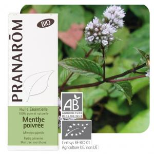 Pranarôm Peppermint essential oil (Mentha x piperita) 10 ml