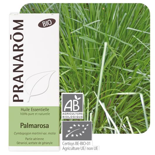 Pranarôm Palmarosa essential oil (Cymbopogon martinii var. motia) 10 ml