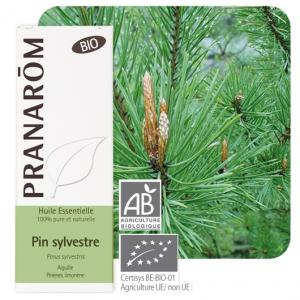 Pranarôm Scots pine essential oil (Pinus sylvestris) 10 ml