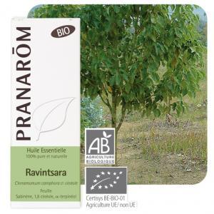 Pranarôm Ravintsara essential oil (Cinnamomum camphora ct cineole) 10 ml