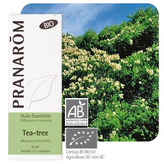 Pranarôm  Tea-tree essential oil (Melaleuca alternifolia) 10 ml