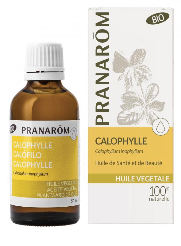 Pranarôm Calophylle vegetable oil (Calophyllum inophyllum) 50 ml