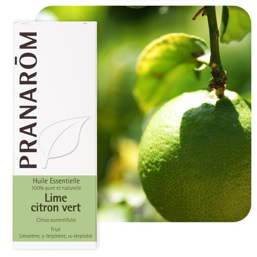 Pranarôm Lime essential oil (Citrus aurantifolia) 10 ml
