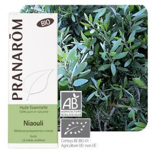 Pranarôm Essential oil Melaleuca quinquenervia ct cineole Niaouli Organic 10 ml
