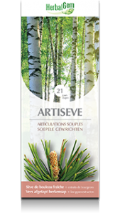 HerbalGem Artiseve Supple Joints 250 ml