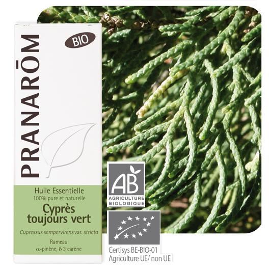 Sypressi eteerinen öljy (Cupressus sempervirens var. stricta) 5 ml