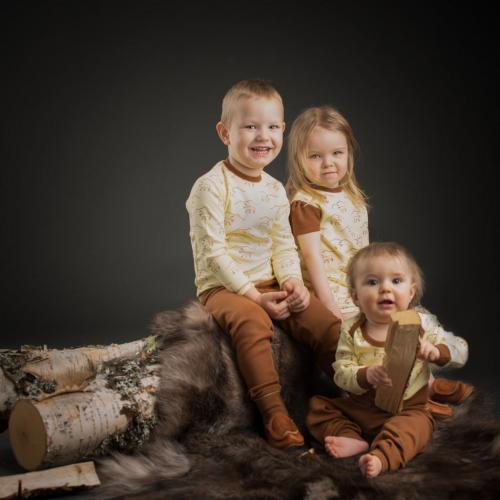 Tröja Reindeer
