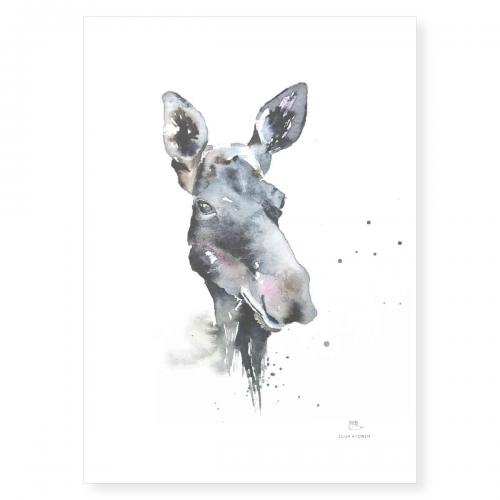 Poster akvarell motiv av älg 50x70 cm
