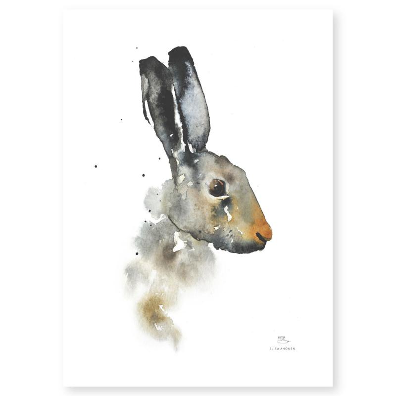 Poster från Ester Visual med motiv av en akvarellmålad hare 50x70cm