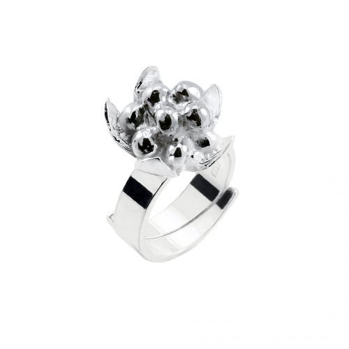 Hjortron ring
