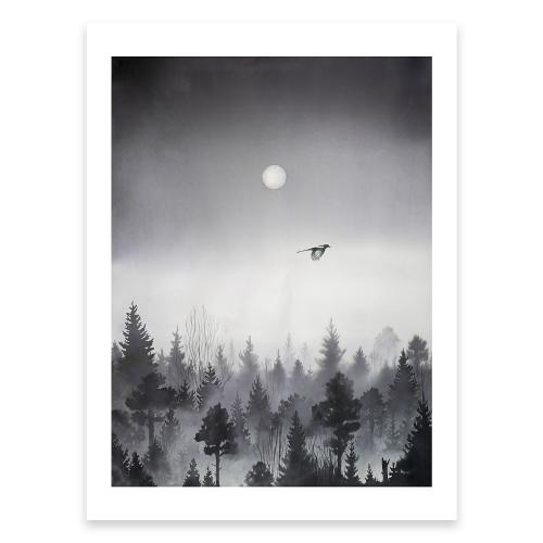 Poster Skog med skata