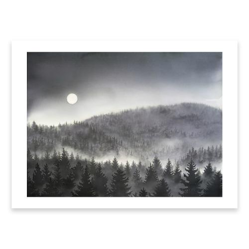 Poster granskog i månsken