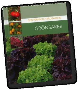Grönsaker - Den perfekta trädgården