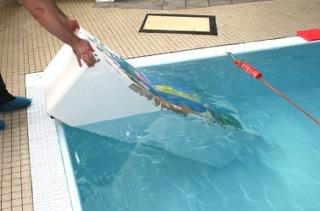 Plattform för bassängbotten med sjö motiv