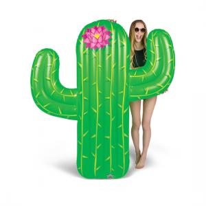 Inflatable lilo - Cactus
