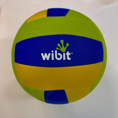 Volleyboll for the water, Wibit