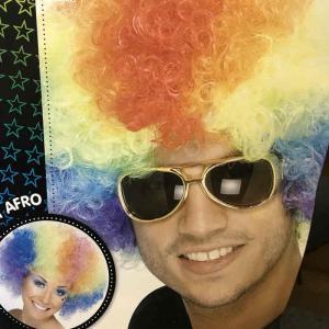 Clownperuk flerfärgad