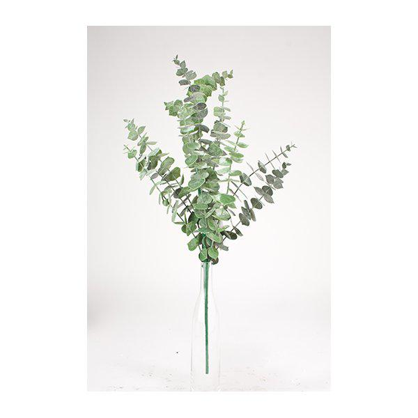 Eucalyptus kvist H40cm